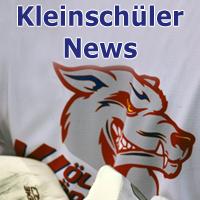 Kleinschüler Meisterschaftsspiel SG Ulm/Neu-Ulm Donau Devils – Wölfe Wörishofen am 28.01.2017